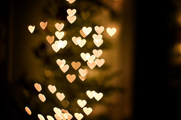 Christmas tree lights blurred in heart shapes