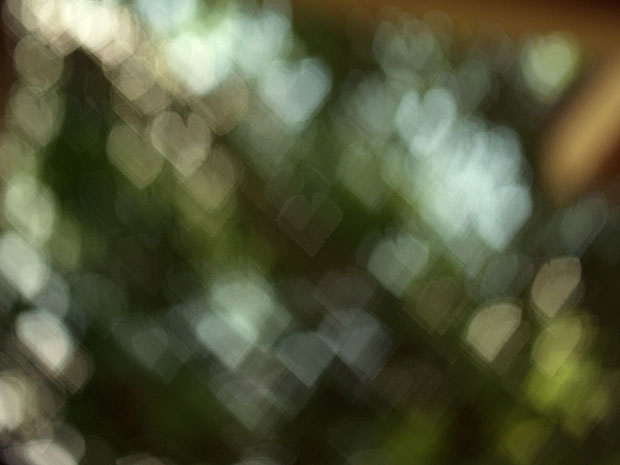 Heart bokeh of light through trees