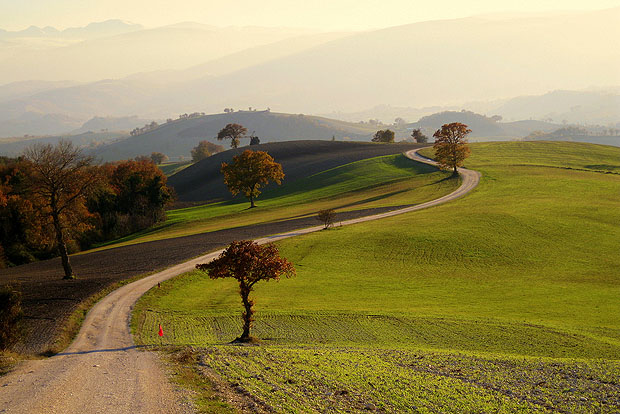 Italian hills with a road leading into the distance