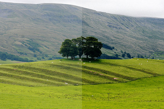Landscape with and without a polarising filter